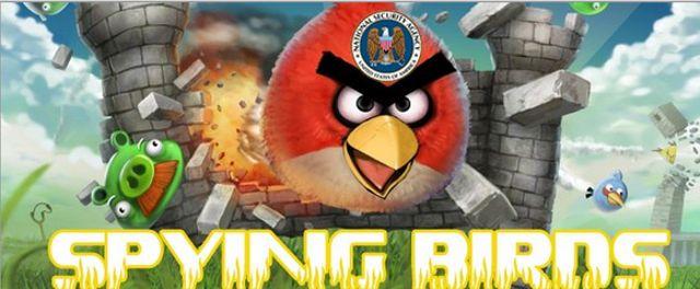 spying-birds[1]