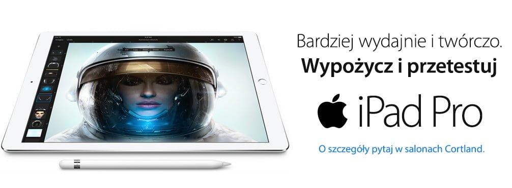 iPada najbardziej kocha biznes 19