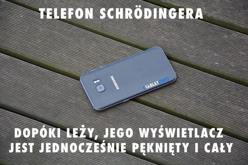telefon_schrodinger