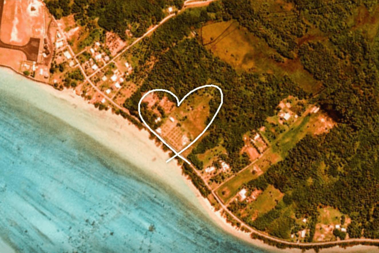 Google zamienia bazgroły w podróż po satelitarnych zdjęciach naszej planety 19
