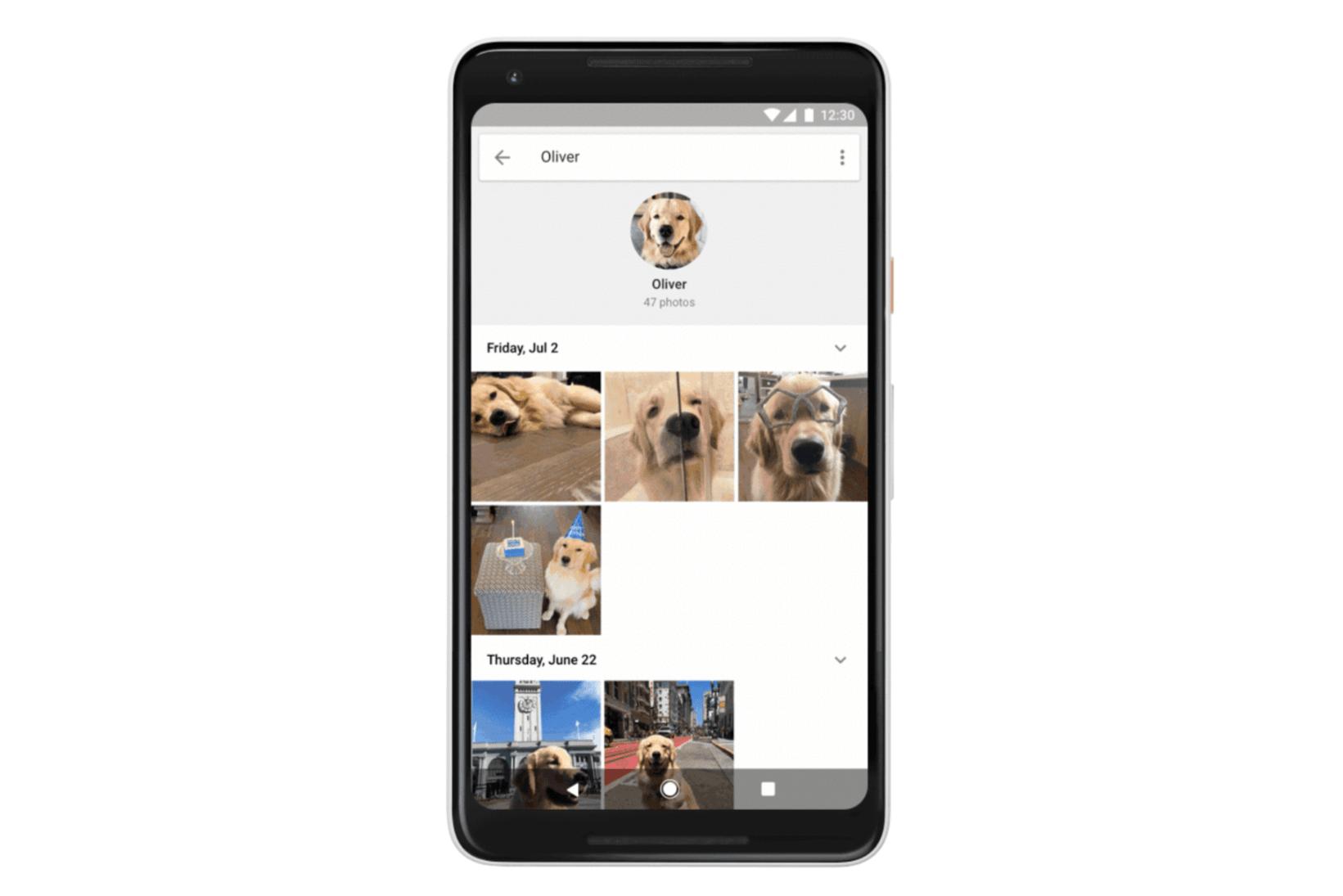 Google potrafi już rozpoznać Cię na zdjęciu. Teraz wrzuci zdjęcia twojego kota do osobnego worka 21