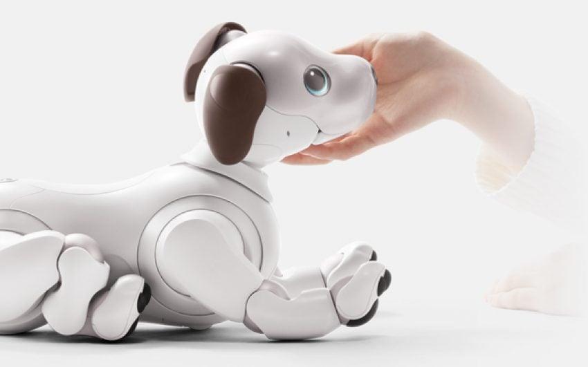 Tabletowo.pl Nowy robot Aibo od Sony: sentyment oraz sztuczna pieska inteligencja sporo kosztują Nowości Sony