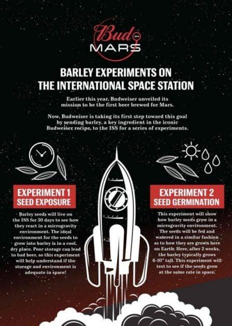 Budweiser zamierza warzyć piwo na Marsie. Ale wcześniej wystrzeli jęczmień na orbitę 21