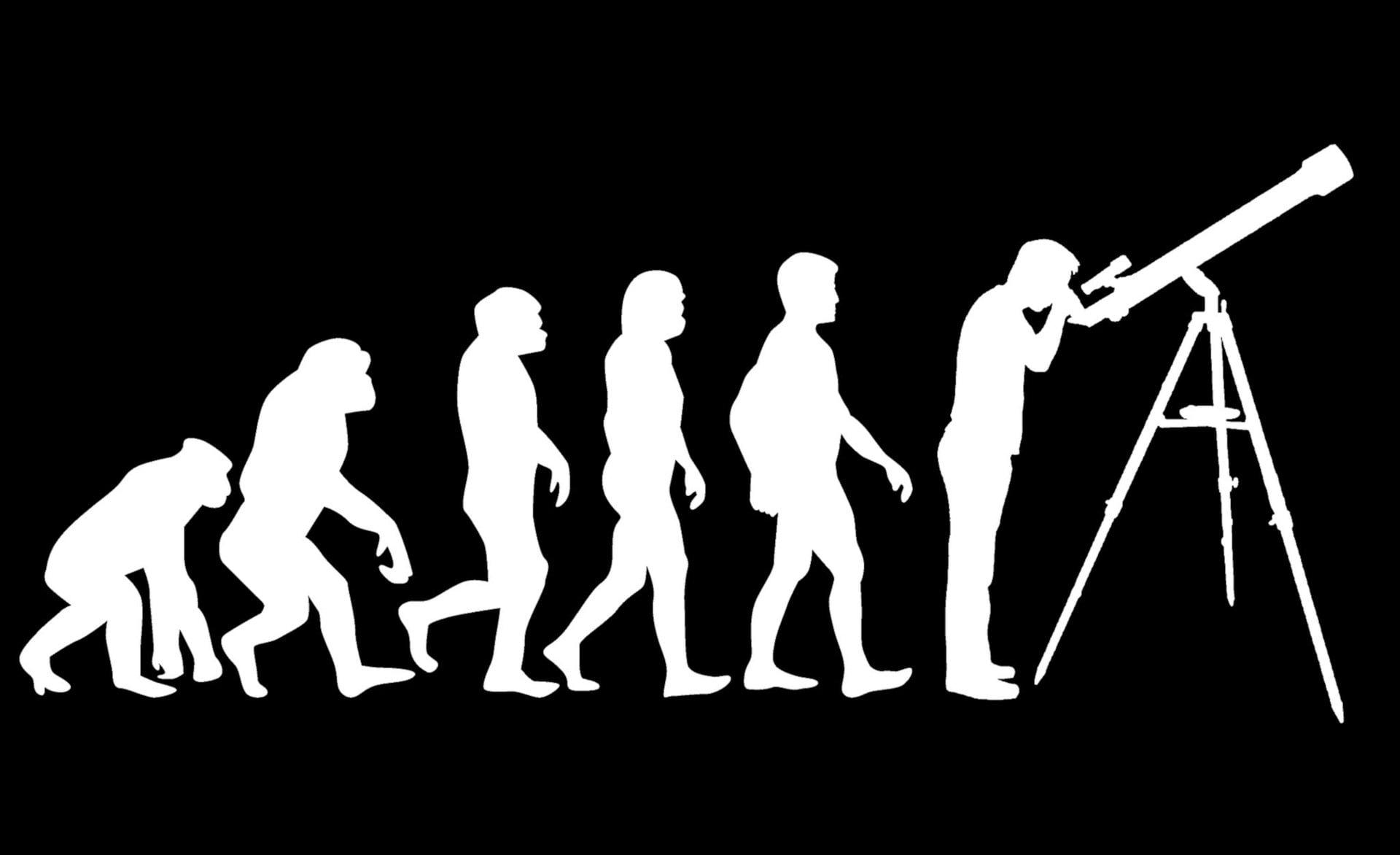zaprogramować ewolucję