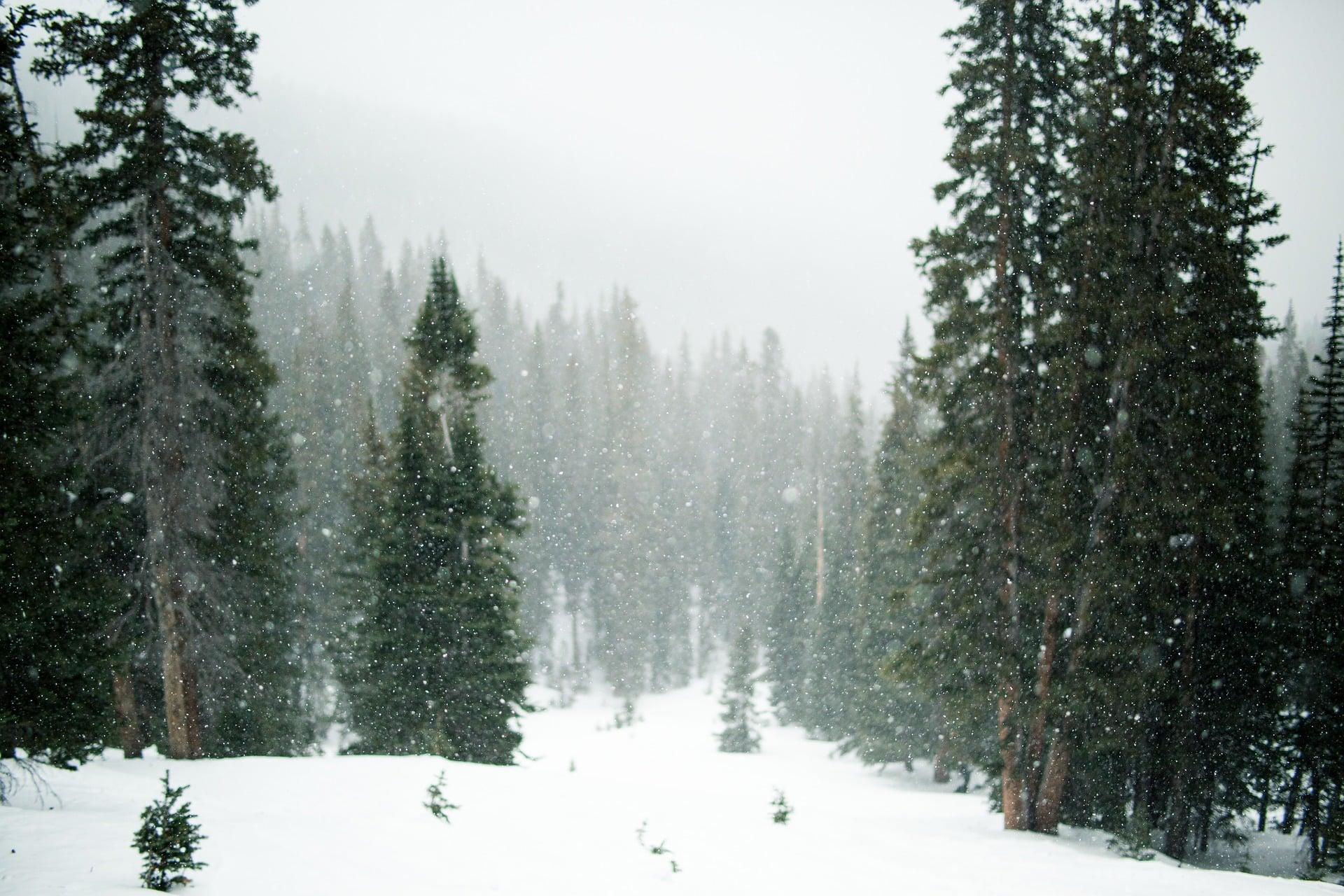 Tabletowo.pl Czy końcówka roku przyniesie śnieg? TOP 5 aplikacji meteo Android Aplikacje Oprogramowanie Recenzje Aplikacji/Gier Zestawienia