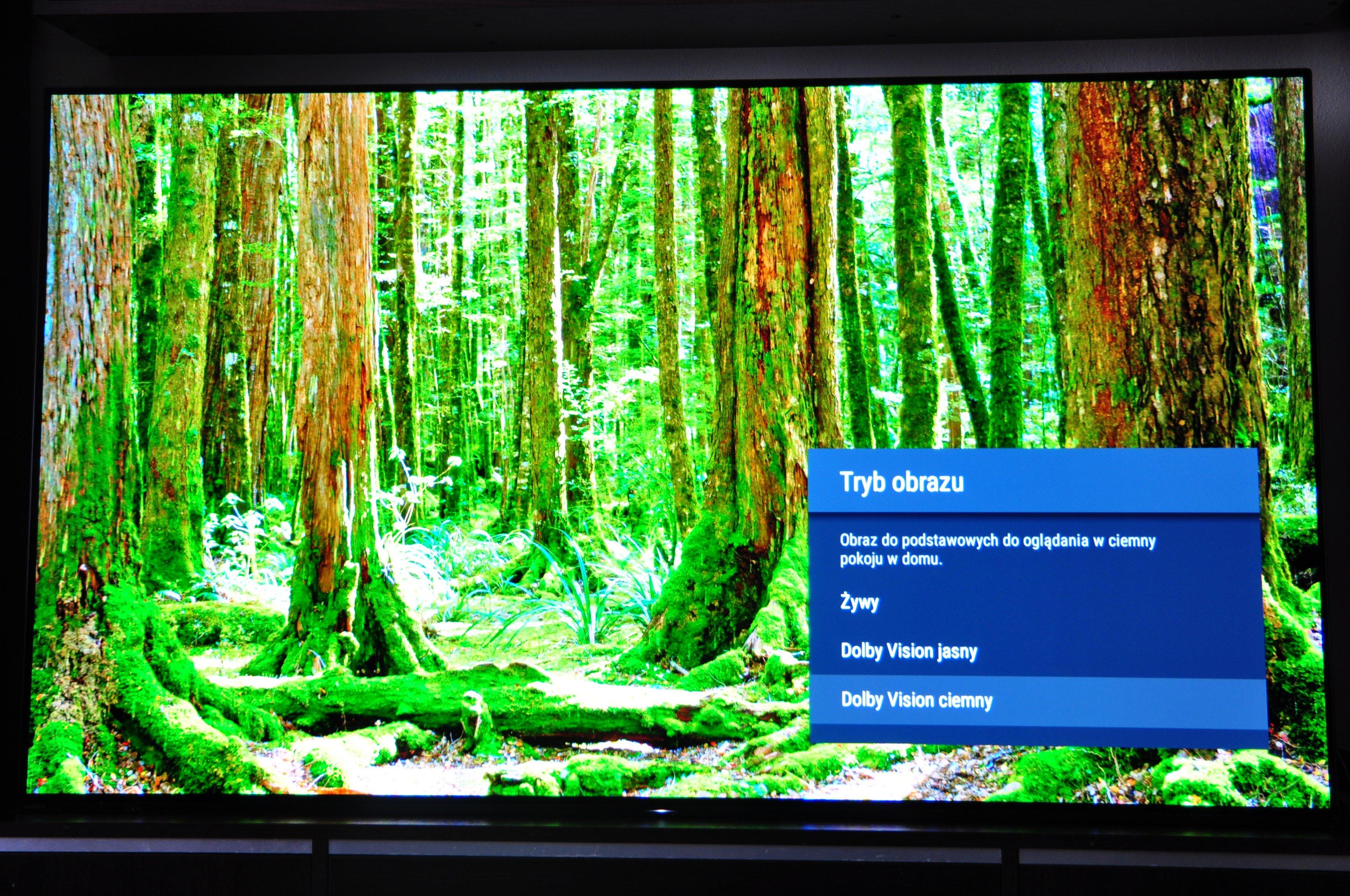 Sony OLED AF9 Master to coś zdecydowanie więcej niż klasyczny telewizor (recenzja) 18