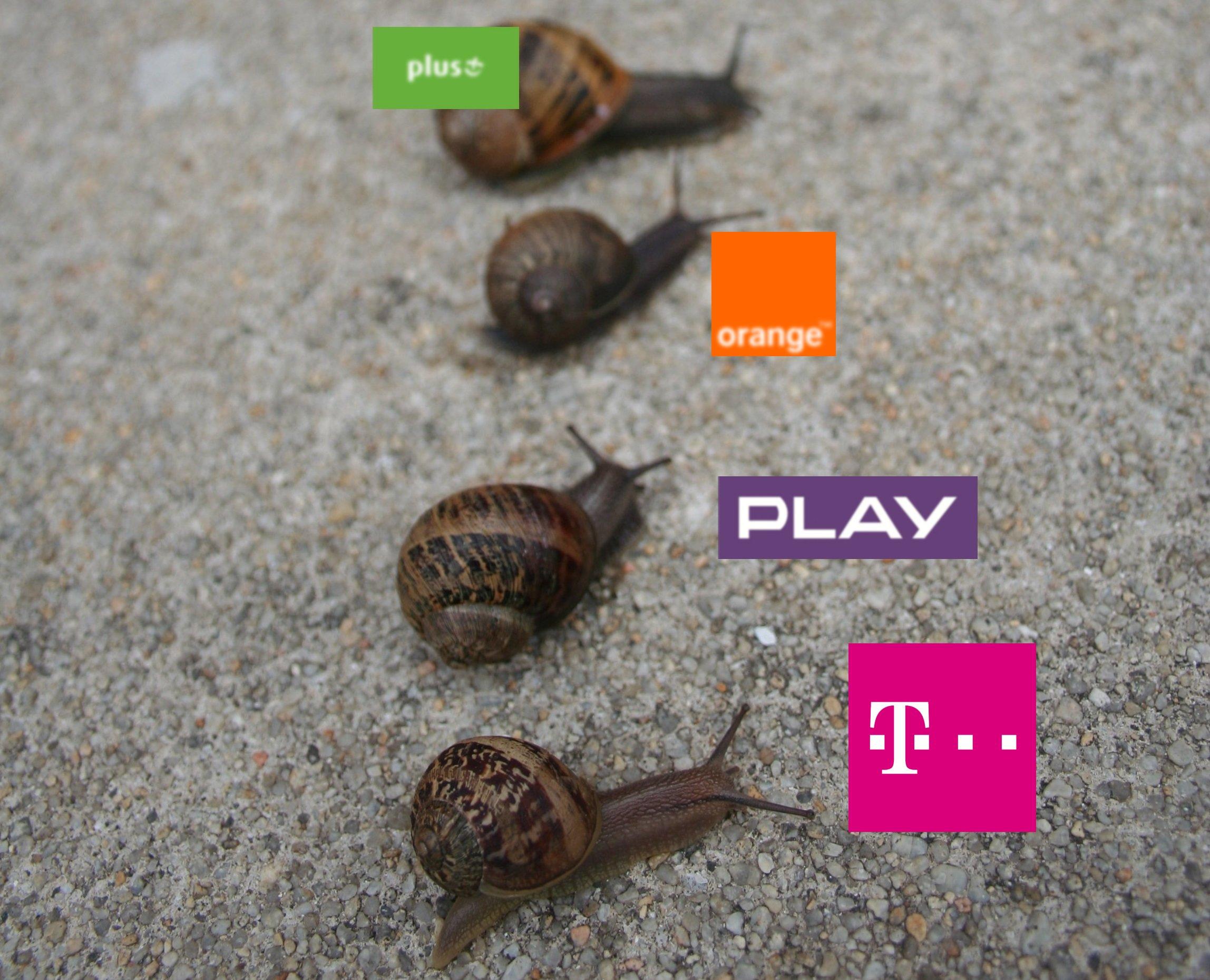 Majowy ranking operatorów. Niespodziewanie prowadzi T-Mobile 20