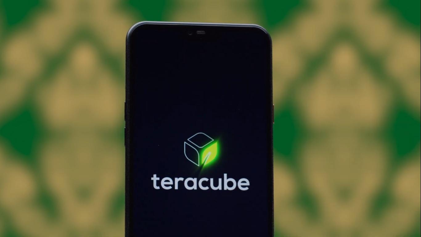 smartfon Teracube