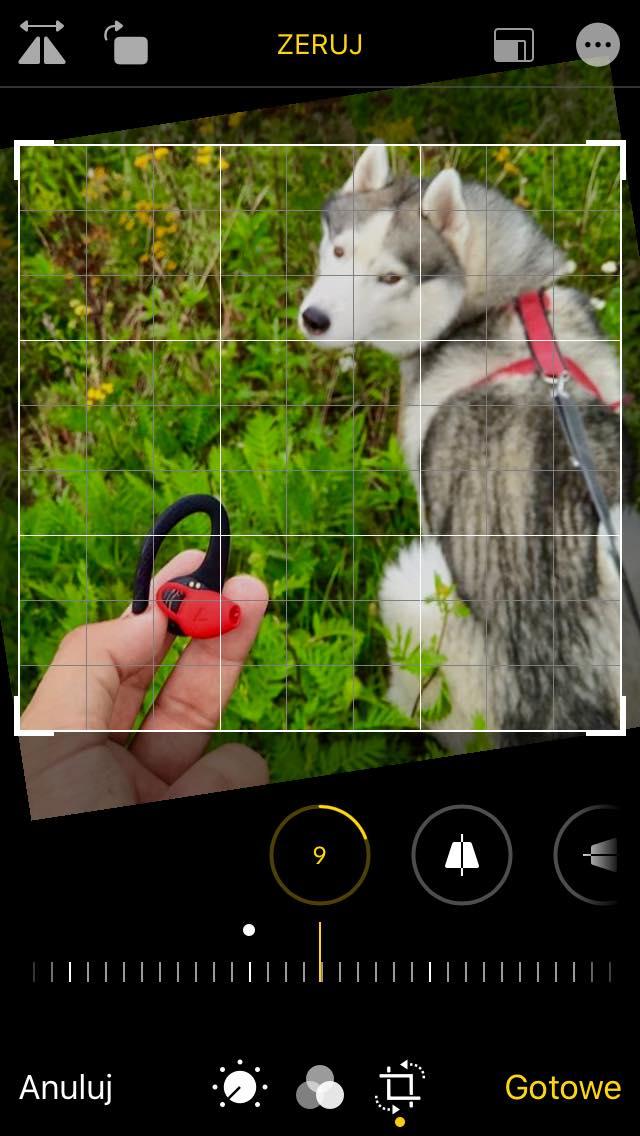 """iPhone SE z iOS 13 - godne pożegnanie króla """"miniaturek""""? 7"""
