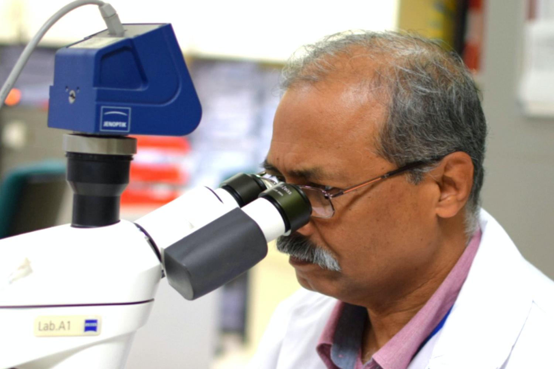 Sztuczna inteligencja Microsoftu pomoże w wykrywaniu raka szyjki macicy