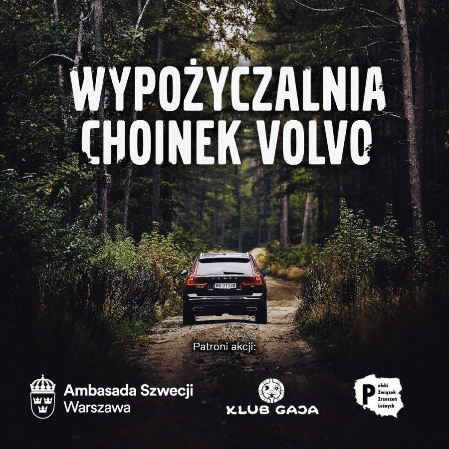 Brawo Volvo! Firma zasadzi tysiące drzew w Tatrach