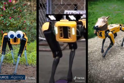 Kup sobie robota kroczącego. Za marne 74 tys. dolarów 28