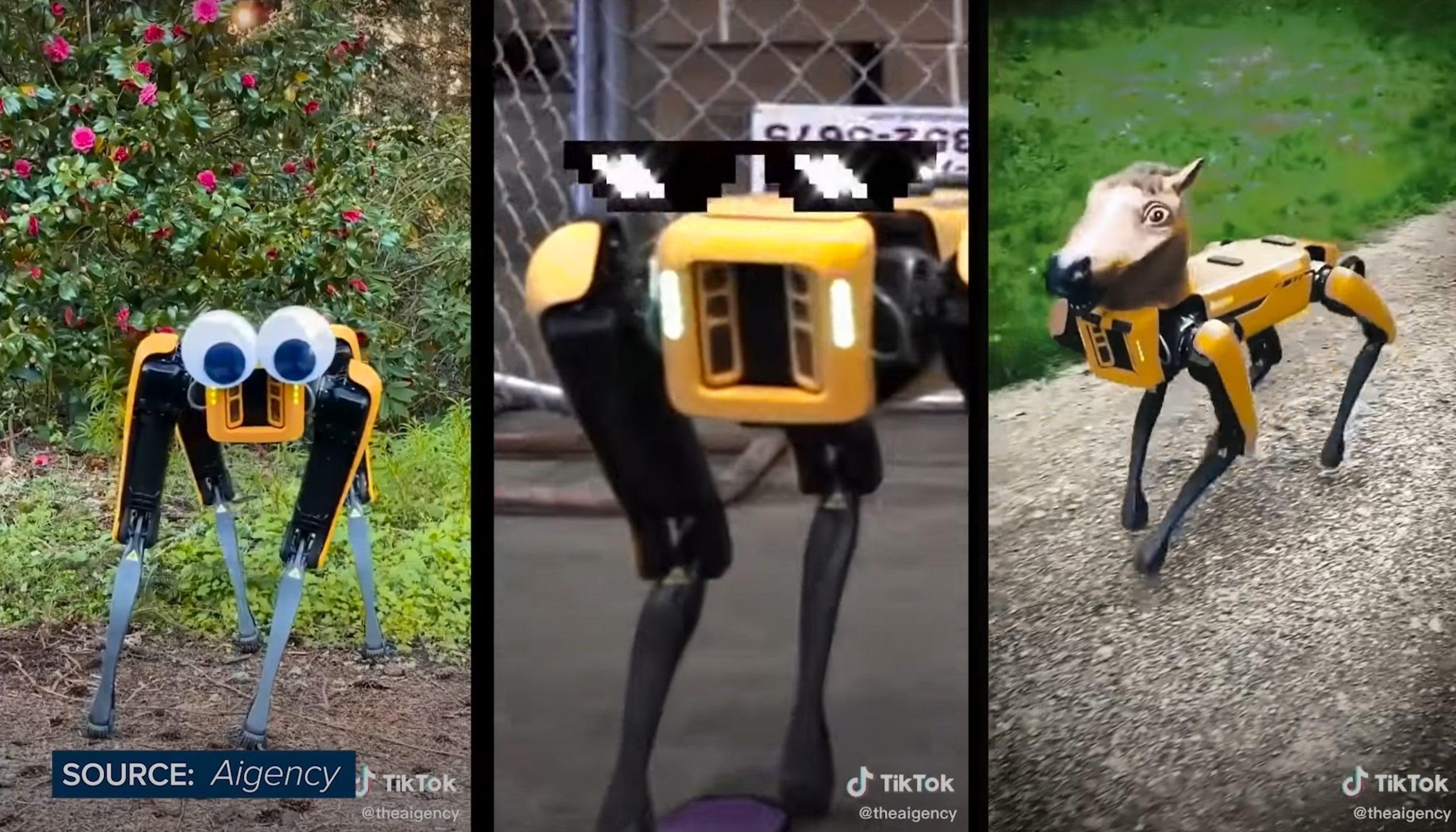 Kup sobie robota kroczącego. Za marne 74 tys. dolarów 15 spot