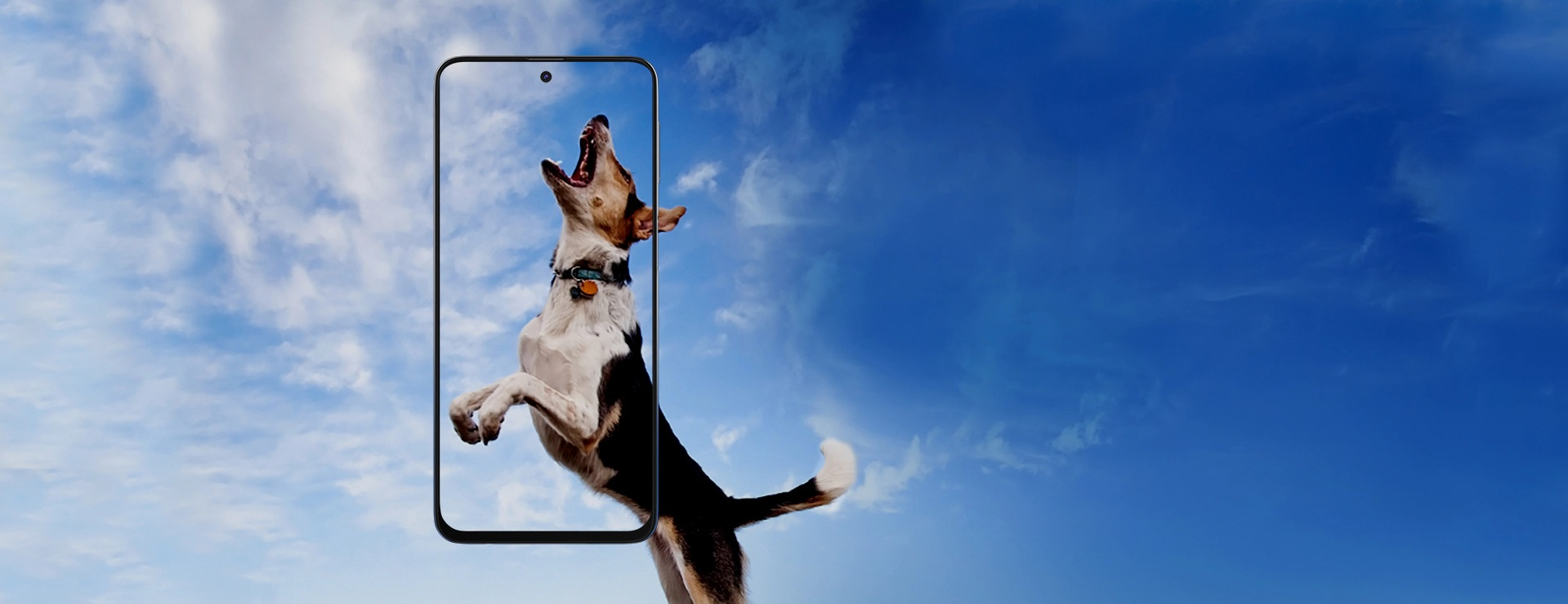 smartfon Samsung Galaxy M31s smartphone