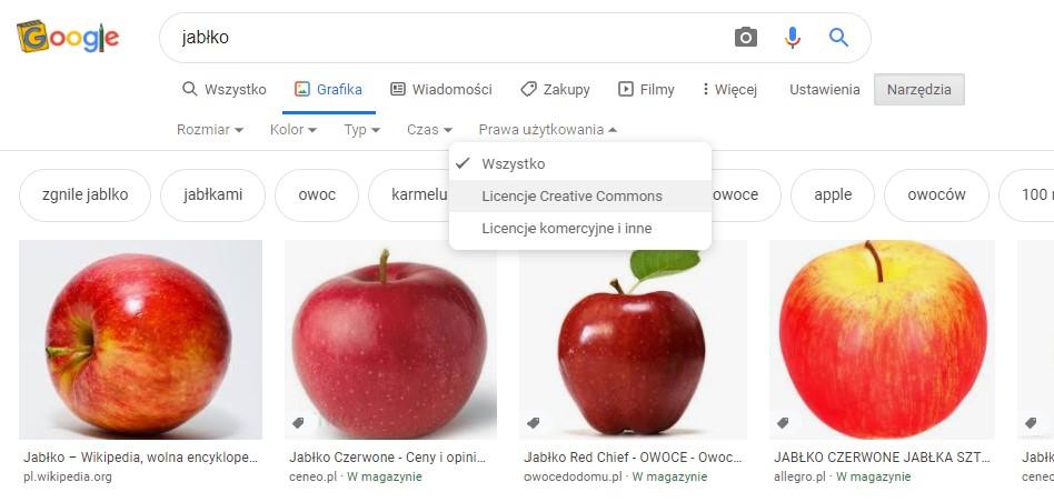Google wskazuje, za które zdjęcia z internetu trzeba zapłacić, a które możesz pobrać za darmo