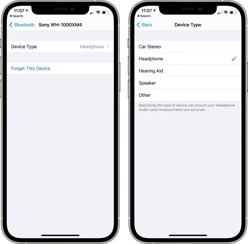 iOS 14.4 Bluetooth Device type