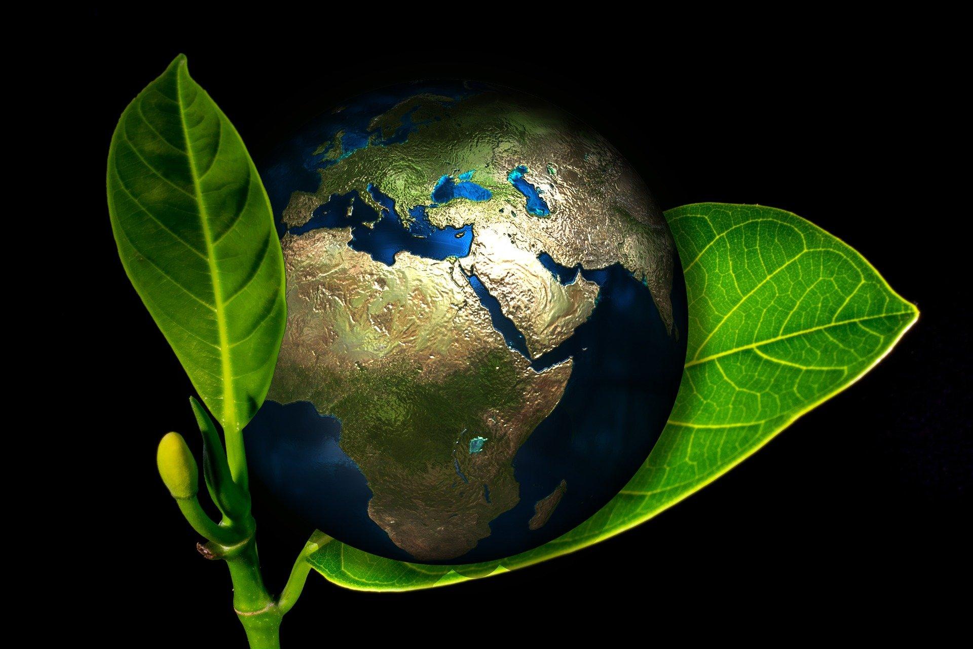 Ziemia świat world Earth globus liść ekologia